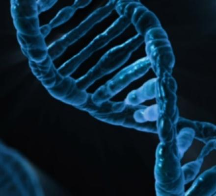 Image of a double helix DNA strand